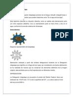 TRABAJO_RIEGO.docx