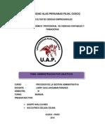 monografia admi por objetivos2.docx