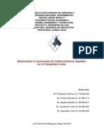 proyecto gerencia 2014