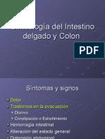 Semiología del Intestino delgado y Colon
