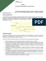 UNIDAD I - Material de Lectura Nº 2 - Clases de Audit Fiscal, Fases