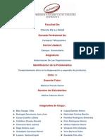 Formato 1_identificacion de La Problematica Gloria Ubillus (1) (1)