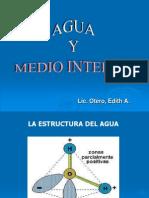 Agua y Medio Interno Enf2011[1] (1)