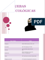 Informacion de Pruebas PSICOLOGICAS