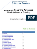 Web Intelligence Advanced