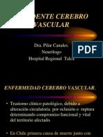 AVE Medicina Pilar Canales