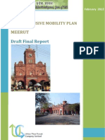 Draft Final Report - Meerut