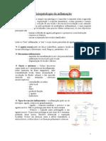 Fisiopatologia+da+inflamação