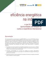 Eficiencia Energetica Na Industria