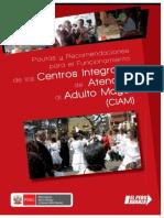 PAUTAS_CIAM