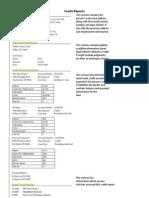 credit reports worksheet