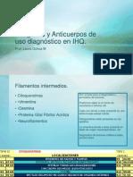 11. Antigenos y Anticuerpos de Uso Diagnostico.