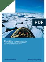 _pwc_paywell2005presentation
