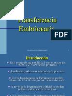 Transplante de Embriones