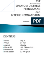 PPT BST.ppt