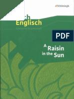 A Raisin in the Sun 1