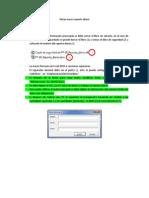 Manual Macro Reporte Diario
