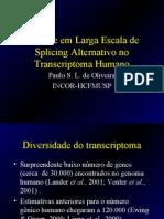 MapeamentodeTranscritos