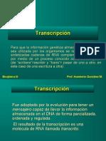 transcripcion 2