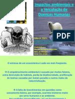 Impactos Ambientais e a Veiculação de Doenças Humanas