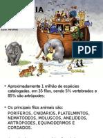 Introdução à Zoologia, Poríferos e Cnidários