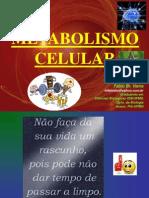 Metabolismo Celular (Completo)