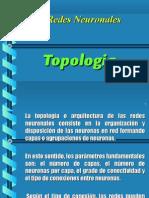 Topologia Redes Neuronales