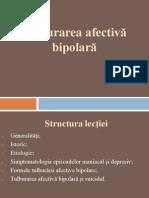 Tulburarea Afectiva Bipolara - 07-01-2014