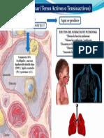 14 Surfactante Pulmonar 02- ABR-14