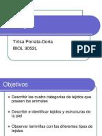 tejidos1