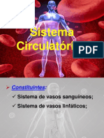 Sistema Circulatório i
