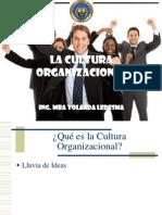 2- Cultura Organizacional
