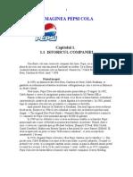 Marketing - Analiza Pietei Pepsi