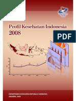 Profil Kesehatan Indonesia 2008