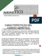 codigogenetico