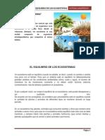 Sitemas Amazonicos Terminado