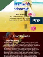 Pertanian Di Indonesia