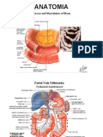 TS13A2_diarrea,colon irritable