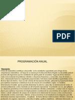 Programacion Anual