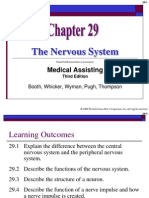 Chapter 29 the Nervous System