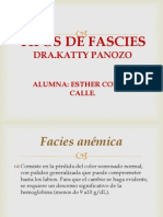 Tipos de Fascies