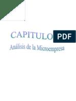 CAPITULO II Analisis de Microempresa de Bisutería