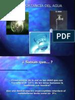 Importancia_Del_Agua_Para_El_Cerebro.pps