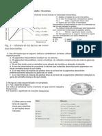 Ficha de Trabalho 1 - Fotossíntese (Com Soluções)