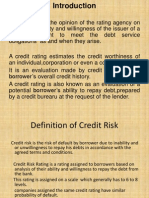 Credit Rating System