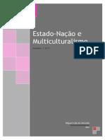 Estado Nacao e Multiculturalismo