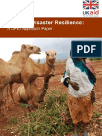 Defining Disaster Resilience Approach Paper