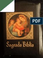 Straubinger-Biblia-Comentada.pdf