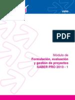 Formulacion, Evaluación y Gestoón de Proyectos 2013-1