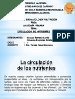 Circulacion de Nutrientes.